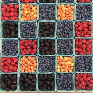 Плодови продукти